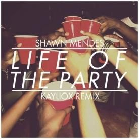 Life Of The Party (Kayliox Remix)