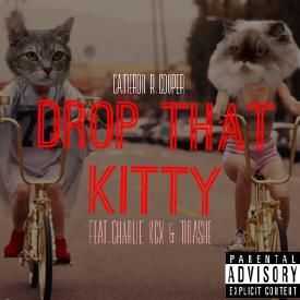 Drop That Kitty Remix