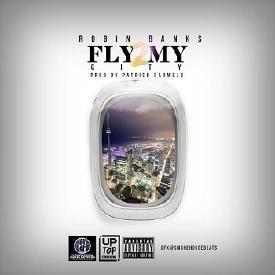 Fly 2 My City