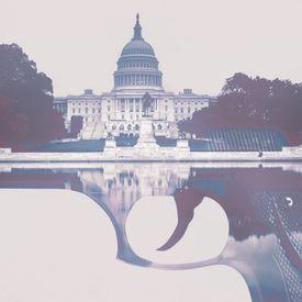 Guns & politics