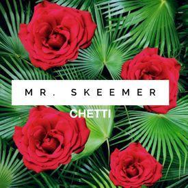Mr. Skeemer