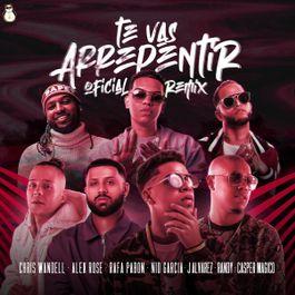 Te Vas Arrepentir Remix
