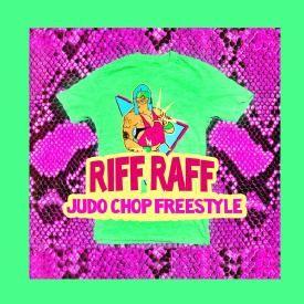 Judo Chop (Freestyle)