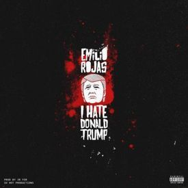 I Hate Donald Trump