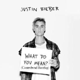 What do you mean (Contrvbvnd Bootleg)