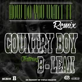 How Do You Want It Remix
