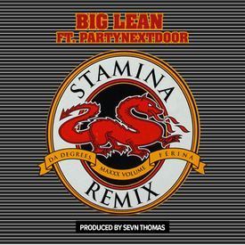 Stamina (Remix)
