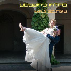 Wedding Dress Screw