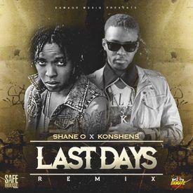 Last Days (remix)