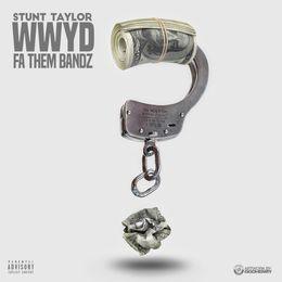 DJ Fiestaboii - WWYD Fa Them Bandz Cover Art