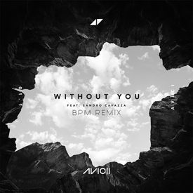 Without You (Bpm Remix)