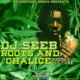 Dj Seeb Roots and Chalice Mix Reggae Culture 2016