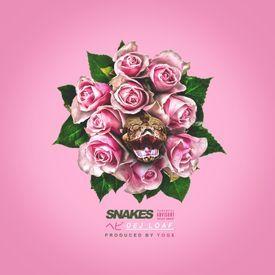 Snakes (Prod. By YOG$)