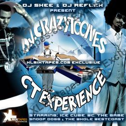 Deltron - CT Experience (10th Anniversary) R.I.P. DJ Crazy Toones Cover Art