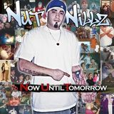 "Deltron - ""NOW UNTIL TOMORROW"" (Nut Nillz Dedication) Cover Art"
