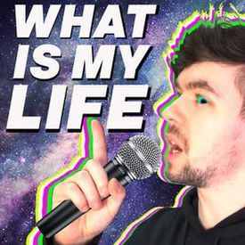 WHAT IS MY LIFE - Jacksepticeye Song