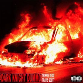 Dark Night Dummo