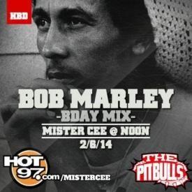 Mister Cee-Bob Marley-Bday Mix