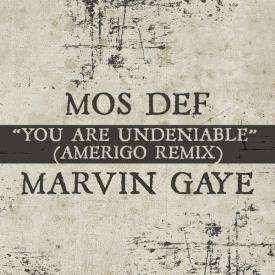 You Are Undeniable (Amerigo Remix)