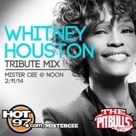 DJ Mister Cee-Whitney Houston-Tribute Mix
