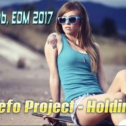 DJ Befo Project /DB Stivensun/ - Holding On Cover Art