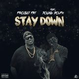 DJ Day-Day - Stay Down Cover Art