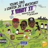 DJ Day-Day - I Want It Cover Art