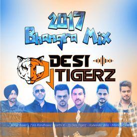 2017 Punjabi Bhangra mix - Dj Desi Tigerz