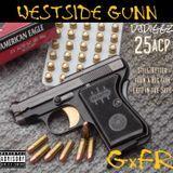 DJ Diggz - .25 ACP Cover Art