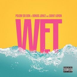 DJ Fly Guy - Wet Cover Art