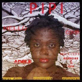 Pipi - HELLO(Adele Cover) | DJ Mtes