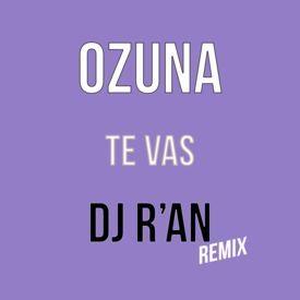 Te Vas (Dj R'an Remix)