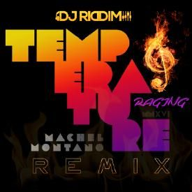 Temperature Raging (Remix)
