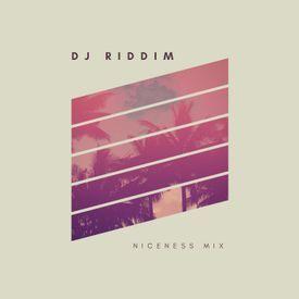 Niceness - Dancehall, Reggae, Soca, Hip Hop Mixtape