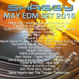 DJ Shaggy May EDM set 2016