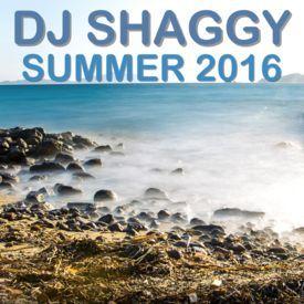 DJ Shaggy Summer 2016  Set
