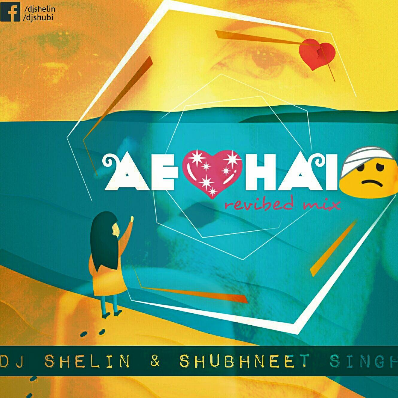 Elbplanke Ä Tännsch N Please: Dj Shelin & Shubhneet Singh