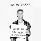 DJ Sidah - What Do You Mean (DJ Sidah Club Mix) Cover Art