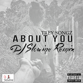 About You - Trey Songz (SLWN Remix)