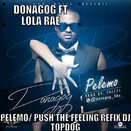 DaNaGoG - PeLeMo Pt2 / Ft LoLa Rae / Push The Feeling ReFiX DJ