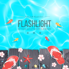 Flashlight ft. Nicole Cross (Dj Vianu & Catalin Peter Remix)