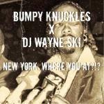 Wayne Ski - NEW YORK, WHERE YOU AT ?!? -  (DIRTY) Cover Art