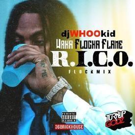 R.I.C.O. (FLOCKMIX)