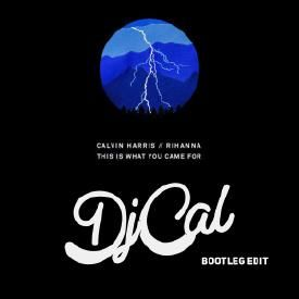 This Is What You Came For (DJ CAL Bootleg Edit)