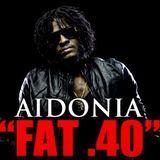 DJJUNKY - Fat 40 (Mavado Diss) (Exclusive Preview) Cover Art