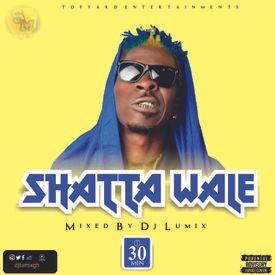 Shatta Wale Mix