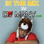 DJ Many - DJ Many Random EDM Mix 2 Cover Art
