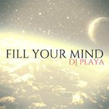 DJ Playa - Fill Your Mind Cover Art