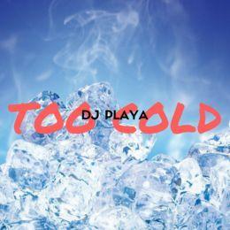 DJ Playa - Too Cold Cover Art
