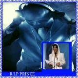 DJRO504 - PRINCE RIP MX DJ RO vs RO WATTS Cover Art